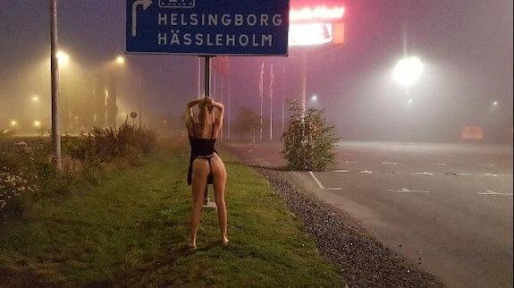 Swedish wife